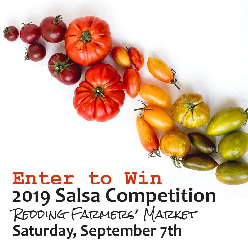 2019 Salsa Contest